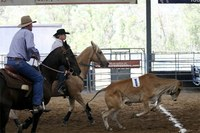 Rodeo Raises Funds